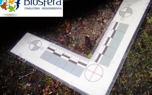 Biosfera Consultoría Medioambiental - Foto 4