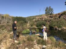 Restauración ribera en Gredos