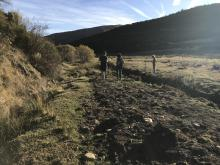 Restauración arroyo Hontanillas