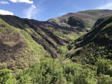 Valle de pico Tuerto