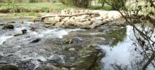 Actuaciones río Trefacio